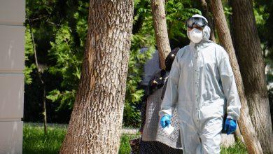 Photo of Новый представитель ВОЗ в Таджикистане заявляет, что пик пандемии в стране еще не пройден