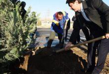 Photo of Рустам Эмомали наградит садовода, лучше всех ухаживающего за деревьями, завезенными из-за рубежа